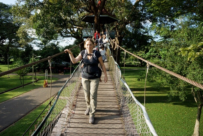 Il y a même dans ce parc un parcourt dans les arbres !