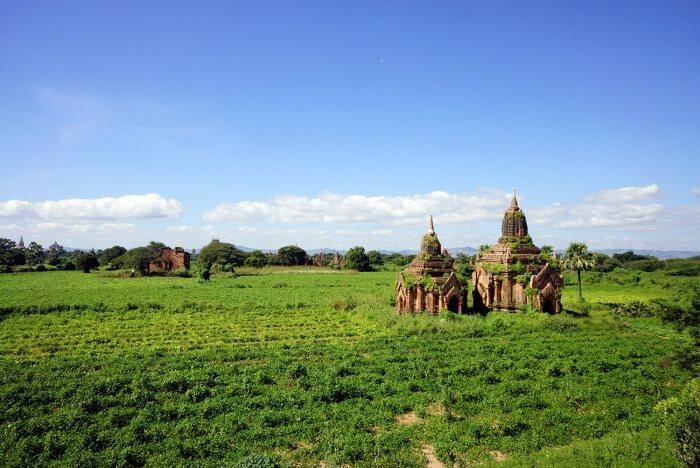 Vue verdoyante sur quelques temples à Bagan.