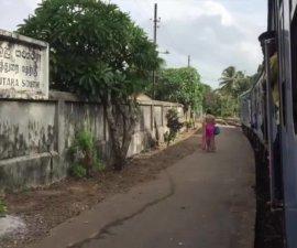 [VIDEO – LE TRAIN AU SRI LANKA – 1 minute] Hier, nous avons pris…