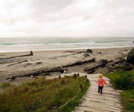 Nous voici arrivés sur l'île du nord de la Nouvelle-Zélande :) Le soleil n'est…